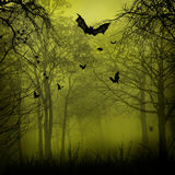 Abstract Halloween backgrounds Stock Images