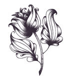 Abstract hand drawn flower. Vector illustration. Royalty Free Stock Images