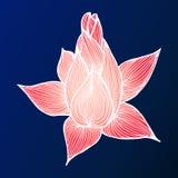Abstract hand drawn lotus flower.  illustration. Outline sketch. Top view. Abstract hand drawn lotus flower. illustration. Outline sketch. Top view stock illustration