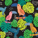 Abstract hand painted seamless animal background.Isolated birds Royalty Free Stock Image