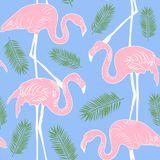 Abstract hand painted seamless animal background.Isolated pink F Royalty Free Stock Photos