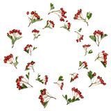 Abstract Hawthorn Berry Wreath stock photo
