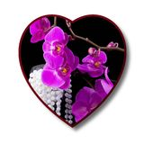 Abstract  heart with the lilac flowers of orchid. Illustration Stock Photo