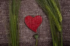 Abstract hearts and ears of corn Stock Photos