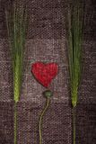 Abstract hearts and ears of corn Royalty Free Stock Images