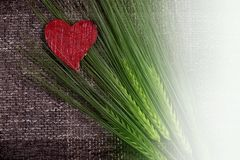Abstract hearts and ears of corn Royalty Free Stock Photos