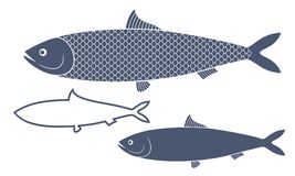 Abstract Herring Royalty Free Stock Image