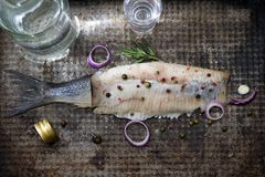 Abstract herring with vodka and glasses creative still life fish like swimming in alcohol stock images