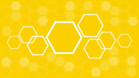 Abstract hexagon Bee hive background vector. Bee hive background banner vector EPS10 royalty free illustration