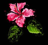 Abstract hibiscus flower on black background. Vector illustration vector illustration