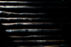 Abstract high contrast texture of wood surface materiral with l. Ight and shadow background for use as background, backdrop, wallpaper, Trunks of birch stock images