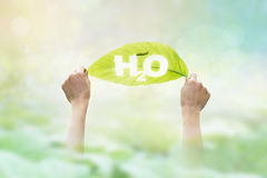 Abstract, holding a green leaf in the word H2O on vibrant nature Stock Photos