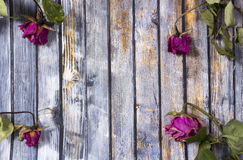 Abstract holiday frame with dry rose petals on old wooden plates Stock Photos