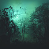 Abstract horror backgrounds Royalty Free Stock Image