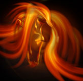 Abstract horse Royalty Free Stock Image