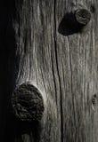 Abstract houten boomstambeeldhouwwerk Royalty-vrije Stock Afbeeldingen