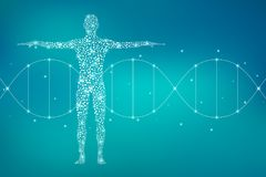 Abstract human body with molecules DNA. Medicine, science and technology concept. Illustration. Royalty Free Stock Photos