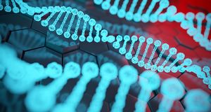 Abstract Human Dna Detailed Structures On Hexagon Background. 3D. Abstract Human Dna Detailed Structures On Hexagon Background With Reflection. 3D Rendering stock illustration