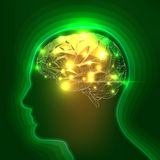 Abstract Human Head Silhouette with a Brain Stock Photography