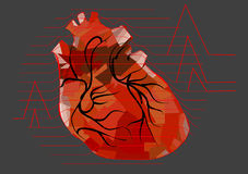 Abstract human heart Royalty Free Stock Image