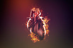 Abstract human heart in flame and smoke Royalty Free Stock Photo