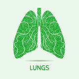 Abstract human lungs. Graphic illustration. Stock Images
