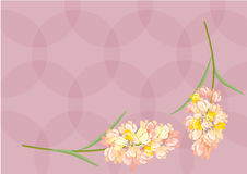 Abstract Hyacinthus flowers on pastel background for background. Abstract Hyacinthus lowers on pastel background for background stock illustration
