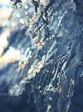 Abstract ice macro background Royalty Free Stock Images
