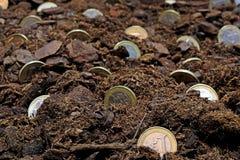 Abstract idee van het kweken van geld Stock Afbeelding