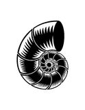 Abstract illustrated spiral. An abstract, black and white vectored illustration of a spiral figure resembling a nautilus seashell or spiraling pipe Royalty Free Stock Photos