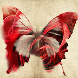 Abstract illustration with butterfly Stock Photography