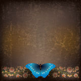 Abstract illustration with butterfly and flowers. Abstract grunge brown background with butterfly and flowers Stock Photos