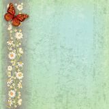 Abstract illustration with butterfly and flowers. Abstract grunge green background with butterfly and flowers Stock Image