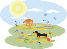 Abstract illustration of Dachshund dog and a red cat with toys. On the meadow in Sunny day Stock Photo