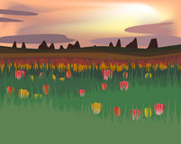 Abstract illustration with field of tulips with sunset in flat d Royalty Free Stock Photo