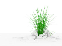 Abstract illustration of Grass Growing Through Cra Stock Photography