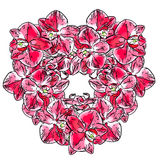 Abstract illustration of orchid flowers Royalty Free Stock Image