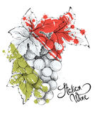 Abstract illustration -- wine from Italy Royalty Free Stock Photo
