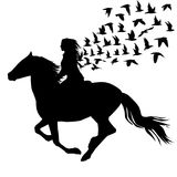 Abstract illustration of woman riding a horse and birds silhouet Stock Photos