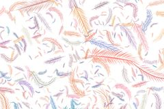 Abstract illustrations of feather, conceptual. Color, digital, hand-drawn & style. Abstract illustrations of feather, conceptual. Good for design background Stock Images