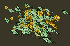 Abstract illustrations of leaves & flowers, conceptual pattern. Details, nature, background & drawing. Abstract illustrations of leaves & flowers, conceptual royalty free illustration