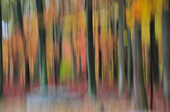 Abstract image of a forest in full fall colors Stock Photo