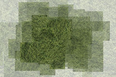 Abstract image. Of grass green lawn Stock Photography