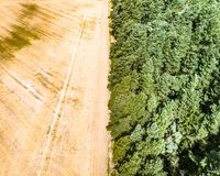 Abstract image of a harvested wheat field, divided at a forest boundary, in the middle.  royalty free stock image