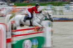 Abstract image with a horse at show jumping. Abstract image with a moving rider and horse at show jumping on blurred background, Herneacova, Romania Stock Image