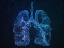 The abstract image human lungs in form of lines Royalty Free Stock Photos