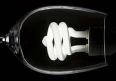Abstract image of a light bulb in a glass Stock Images