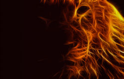 Abstract image lion flame darkness black. Color wallpaper background illustration stock Royalty Free Stock Photo
