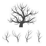 Abstract image - a silhouette of a lonely tree Royalty Free Stock Photography
