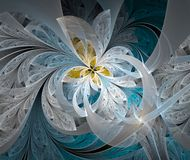 Abstract Image White flower. Royalty Free Stock Photo